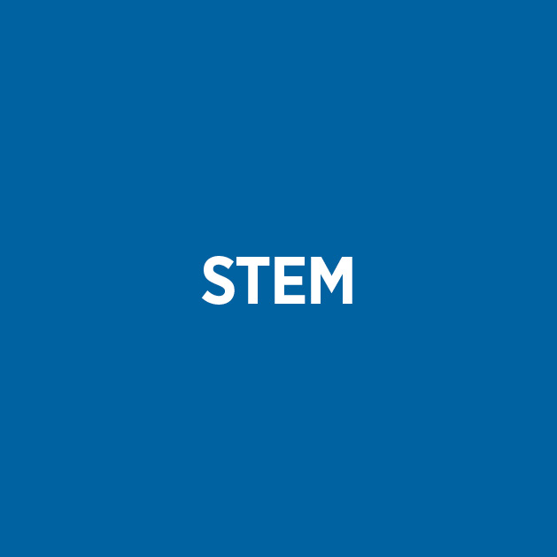 STEM Button